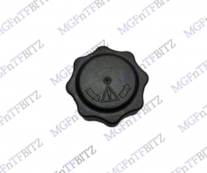 Expansion Tank Cap PCD100160