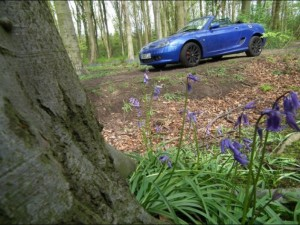MG TF in the bluebellsMGFnTFBITZ Customer Cars Gallery