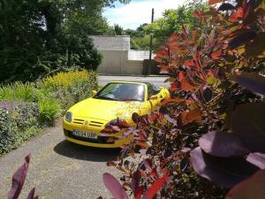 Trophy Yellow MG TF 1.6 ButtercupMGFnTFBITZ Customer Cars Gallery